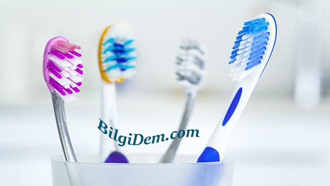 Diş Fırçası Alırken Nelere Dikkat Edilmeli?