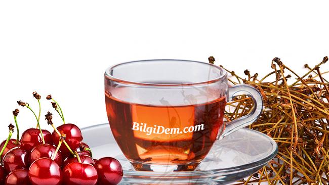 Kiraz Sapı Faydaları: Vişne Ve Kiraz Sapı Çayı Nasıl Yapılır
