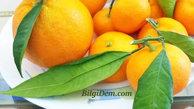Portakal Kabuğu – Limon Ve Mandalina Kabuğu Nasıl Kurutulur?