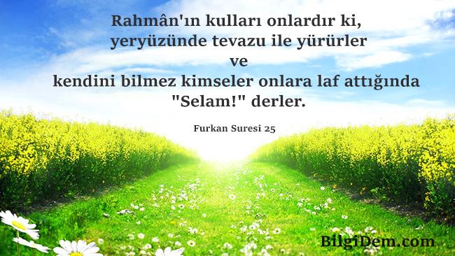 İbadur Rahman- Rahman'ın Seçilmiş Kulları Kimdir?