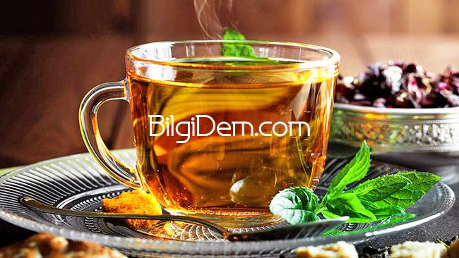 Hangi Çayı İçmeliyim? Bitki Çayı İçmek İsteyenlere Öneriler