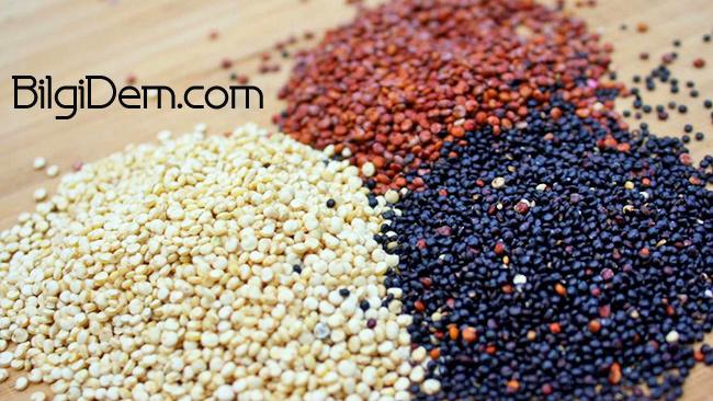 Quinoa: Protein Kaynağı Kinoa Nedir Ve Nasıl Kullanılır?
