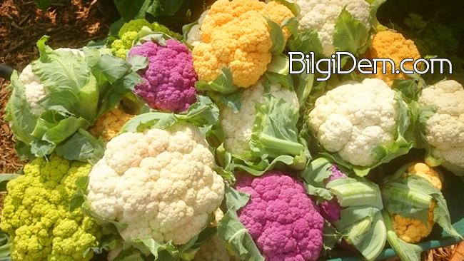 Cauliflower - Karnabahar Faydaları ve Besin Değerleri Nedir