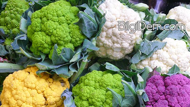 Cauliflower – Karnabahar Faydaları ve Besin Değerleri Nedir