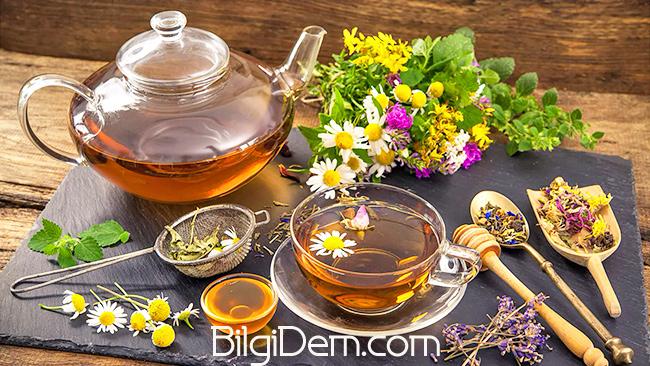 Bağışıklık Güçlendirici Bitkisel Çaylar