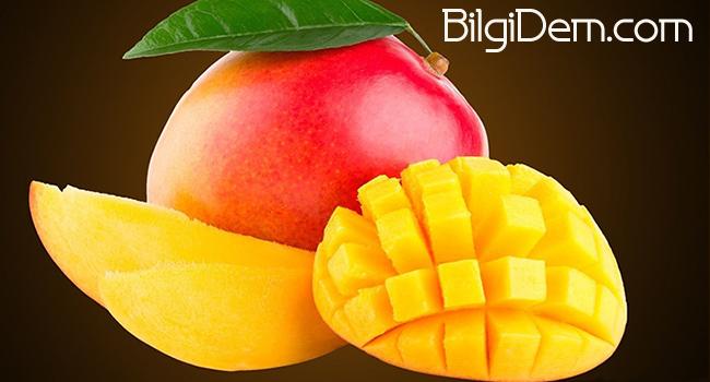 Mango Nedir? Mango Nasıl Kesilir? Mango Nasıl Saklanır?