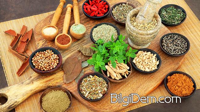 Sağlığımız İçin Faydalı Tohumlar Nelerdir?