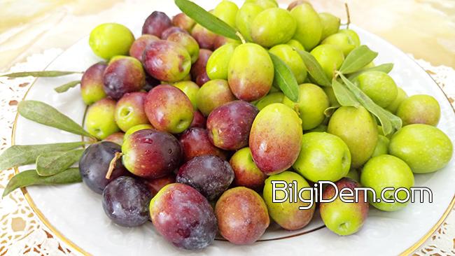 Zeytin Ağaçlarının Mucizevi Meyvesi Olan Zeytin'in Faydaları