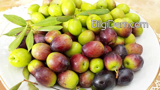 Zeytinin Besinsel İçeriği Nedir?