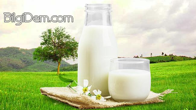 Süt İçerek Sağlığınızı Koruyun: Sütün Faydaları