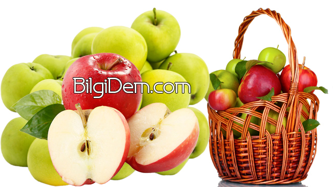 Elmanın Sağlığa Faydaları Nelerdir?